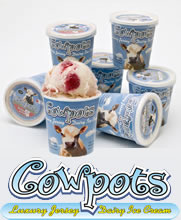 Cowpots Luxury Jersey Dairy Icecream